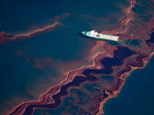 BP trial: Oil spill caused massive ecological damage, marine